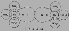 [Nitrogen overlap in a ruthenium complex]