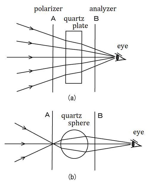 [Shigeru Figure 5]