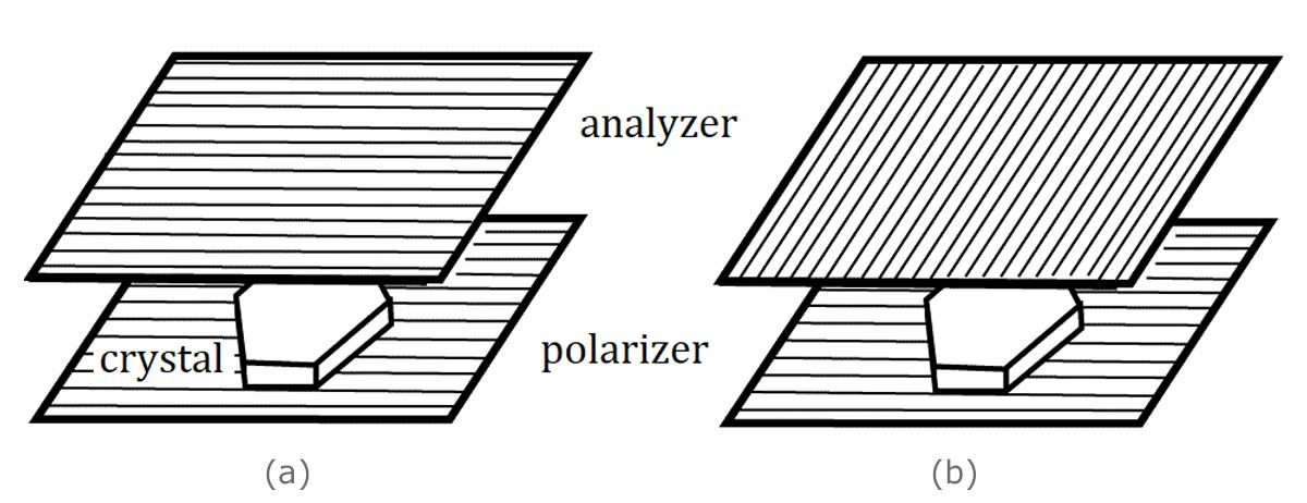[Shigeru Figure 3]