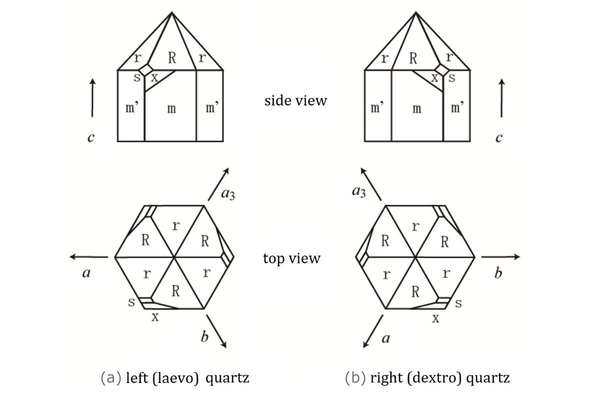 [Shigeru Figure 1]